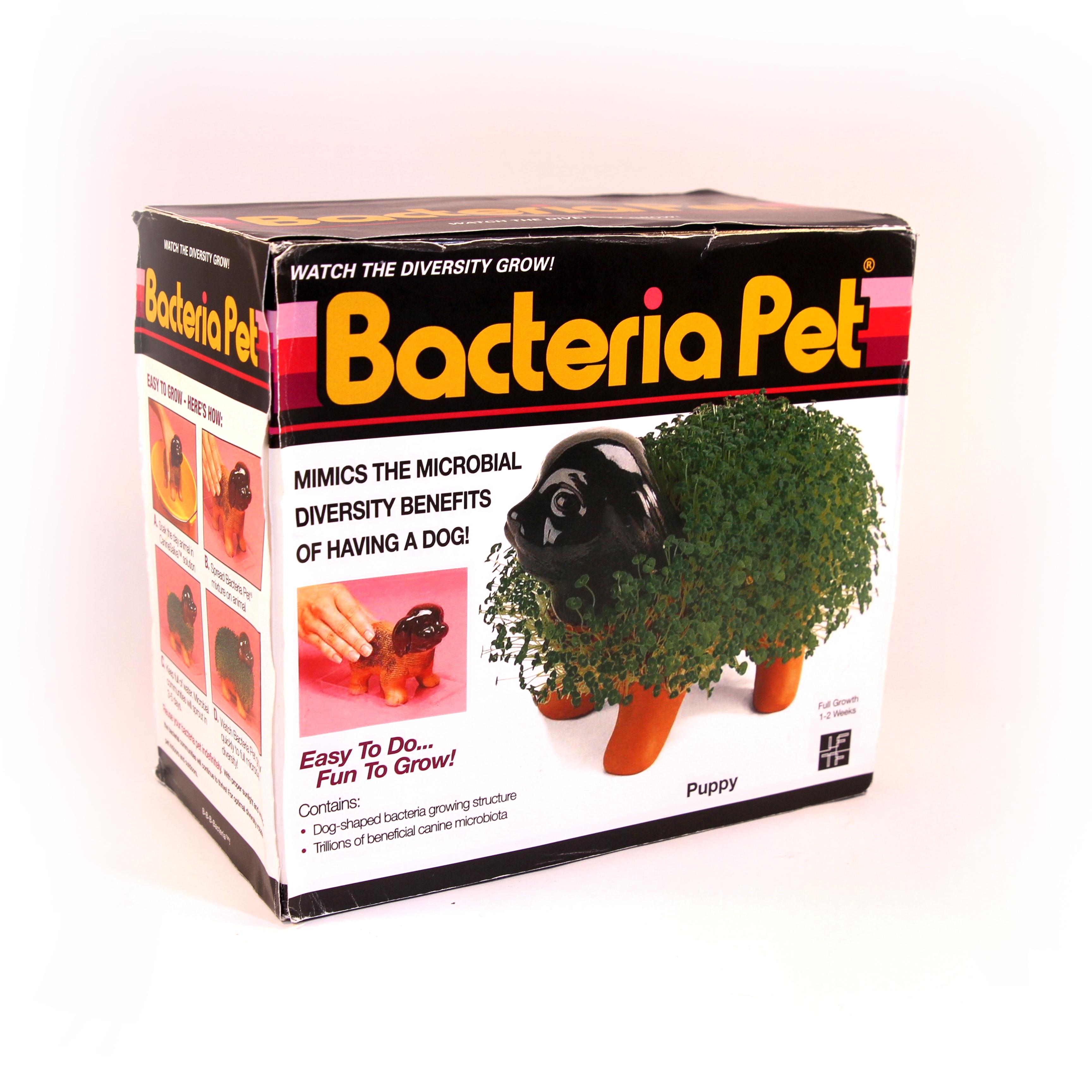 bacteria pet